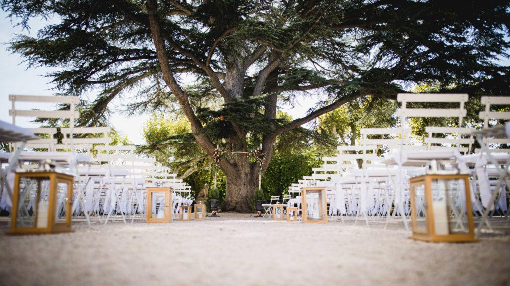 Au pied d'un pin plusieurs fois centenaire, l'arche de fleurs de la cérémonie de mariage laïque